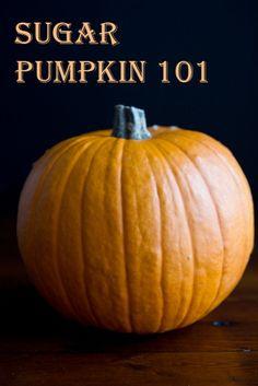 How To Roast A Sugar Pumpkin & Make Fresh Pumpkin Purée – A Step-by-step Photo Tutorial