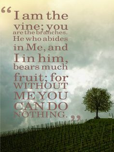 Insightful post offering a tender look at our service for God, from the heart of a mother. (John 15:5) http://adivineencounter.com/help-me-help-you