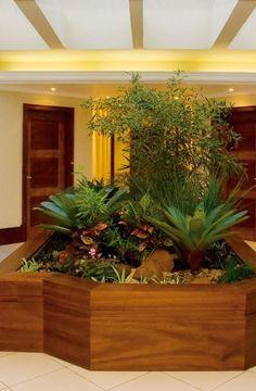 Especialista aponta quais são as plantas, a estrutura e os utensílios mais adequados para um jardim interno