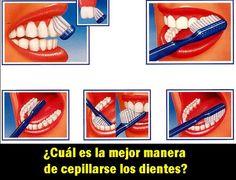 ¿Cuál es la mejor manera de cepillarse los dientes? | Directorio Odontológico