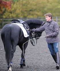 Lungeing is a tricky one - it seems like a straightforward concept, but it's actually an important conversation between you and your horse. Dressage star Michael Eilberg give you a demo of his techniques... http://www.horseandrideruk.com/article.php?id=2844