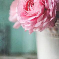 One Sweet Pixel - Fine Art Textures and Lightroom Presets Used on this photo  #Regram via @onesweetpixel