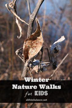 Winter Nature Walks for Kids | http://www.alifeinbalance.net