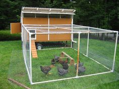 pvc-chicken-coop ( hmmm... this basic design idea could be used for garden covers and other things around the property)