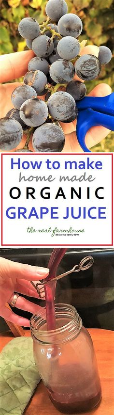 How to Make Home Made Organic Grape Juice | The Real Farmhouse