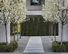 Contemporary Landscape Design, Pictures, Remodel, Decor and Ideas - page 11