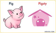 Animal And Their Homes With Pictures, Download Pdf & PPt Animal House Names, Animals And Their Homes, Rabbit Life, List Of Animals, Dog Life, Pikachu, Environment, Teacher, Dogs