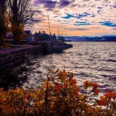 Lake Zurich by Tieffenbrunnen