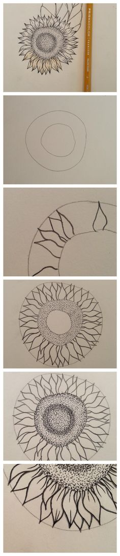 Full tutorial on how to draw an EASY, detailed sunflower. Follow these basic steps and get these great results!