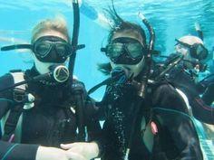 Marine Biology equilibrium psychology sydney