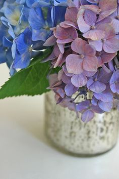 hydrangeas in mercury glass vase - suzanneduda