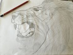 The King #Drawing