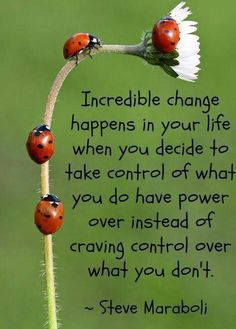 Take control over what you do have power over, instead of craving control of what you don't. •Steve Maraboli