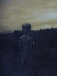 Scientist says Aliens in UFOs might be Earthlings from the Future - Aliens are Humans Area 51, Alien Aesthetic, Space Aliens, Mystery, Aliens And Ufos, Alien Art, Bizarre, Cryptozoology, Arte Horror