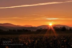 and there was light by CarlottafedeRicci. Please Like http://fb.me/go4photos and Follow @go4fotos Thank You. :-)