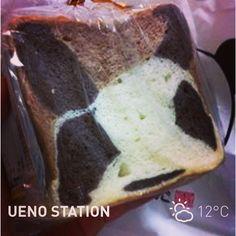 #ueno #tokyo #panda #pandapan #japan
