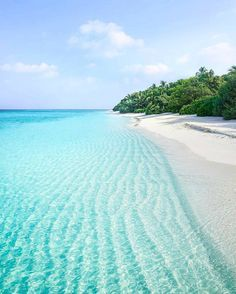 The clear waters of the Maldives. Learn about the top beach destinations in the world.