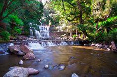 Liffey Falls (ii)