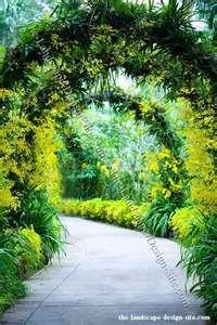 tropical garden arbor ideas