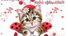Καλημέρα και Καλή εβδομάδα!........giortazo.gr Good Morning, Cats, Animals, Good Morning Images, Buen Dia, Gatos, Animales, Bonjour, Animaux