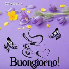 Le più Belle Immagini del Buongiorno! Gratis e Sempre Aggiornate! Italian Memes, Good Morning, Lily, Snoopy, Beautiful, Instagram, Good Morning Wishes, Pink, Italian Quotes