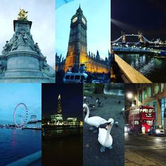 Took the missus parents for their first visit to London yesterday so had to do all the tourist spots! Really pains me to see what it's become... Wish I could time travel to Victorian London. #london #londoncity #ldn #ldntown #londontown #bigben #housesofparliament #buckinghampalace #thequeen #swans #wildlife #towerbridge #towerhill #londoneye #theshard #routemaster #riverthames #thethames #england #tourist #unitedkingdom #londonlife by andrewjb_e13