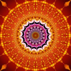 la force est là ! force is present ! força está presente ! Mandala de Pierre Vermersch Digital Drawings