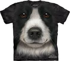 This cool Border collie t-shirt will impress everybody by its vivid look. The Mountain offers you the amazingly realistic Border Collie Face T-Shirt The Mountain, designed by the artist Vincent Hie. The pseudo t-shirt will last you years. T Shirt Chien, Cute Puppies, Dogs And Puppies, Doggies, Real Dog, T Shirts Uk, Big Face, Collie Dog, Border Collies