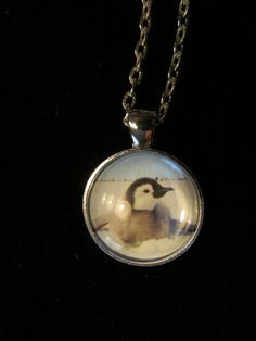 Baby Penguin Pendant Necklace or Keychain by EverythingsDuckyBout, $9.99