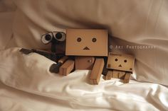 So so cute! | Danbo Robot | Danbo Adventure Photography by ARI
