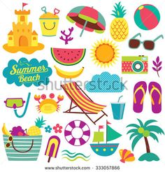 Seashell Stock Photos, Images, & Pictures | Shutterstock