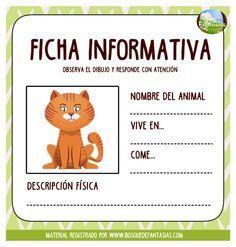 Fichas INFORMATIVAS de ANIMALES: Nombre y características Spanish 1, Science Biology, Toddler Activities, Acting, Kindergarten, Homeschool, Cute Animals, Classroom, Teacher