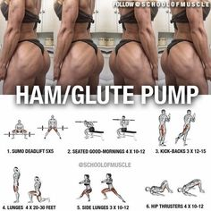 "1,171 Likes, 20 Comments - School Of Muscle (@schoolofmuscle) on Instagram: ""✅ Hammie and Glute Workout! . . . And Men, It's Your Duty To Tag That Booty . Tag your gf or…"" #musclebuilding"