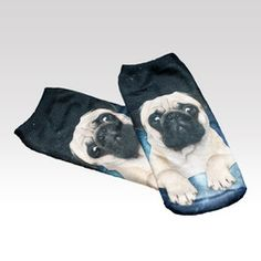 Ponožky Mops