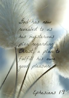 Ephesians God has now revealed to us his mysterious plan regarding Christ, a plan to fulfill his own good pleasure. Christian Life, Christian Quotes, Bible Scriptures, Bible Quotes, Book Of Ephesians, Christ In Me, God Is Amazing, Lord Is My Shepherd, Word Pictures