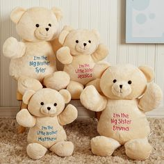 Personalized Big brother, Big Sister Plush Bear, perfect gift to the older sibling of baby!