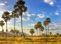 The Visitors Guide To Kampong Chhnang