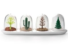 Qualy Kruidenpotjes Bomen