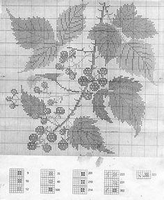 Gallery.ru / Фото #2 - 7 - Viki-Kitti Cross Stitch Fruit, Cross Stitch Flowers, Filet Crochet, Pattern Books, Embroidery Art, Cross Stitching, Needlepoint, Needlework, Chiffons