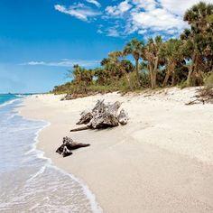 Cayo Costa State Park  Boca Grande, FL