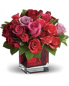 Rose Delivery, Same Day Flower Delivery, Home Flowers, Romantic Flowers, Send Roses, Hot Pink Roses, Order Flowers Online, Rose Arrangements, Valentines Flowers