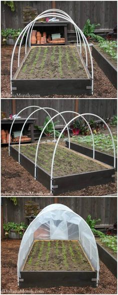 Mini Hoop Style Plastic / PVC Pipe Greenhouse - 80+ DIY Greenhouse Ideas with Step-by-Step Tutorials - DIY & Crafts