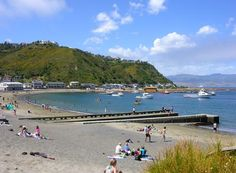 This is the local beach in Island Bay, the suburb where I live (this is just down the road from my house).