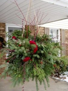 Cuttings scavenged from around the yard make up this wintery hanging basket.