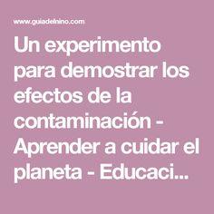 Un experimento para demostrar los efectos de la contaminación - Aprender a cuidar el planeta - Educación - Guia del Niño