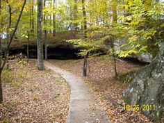 Cave Spring on the Natchez Trace Parkway. Just north of Tishomingo near the Mississippi/Alabama stateline. Up The Movie, Cave Spring, Natchez Trace, Family Travel, Family Trips, Down South, Travel Usa, State Parks