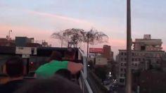 Strange behavior of birds (New York)Путин в небе над нью йорком!