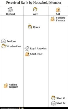 GraphJam: Perceived Rank by Househould Member - Cheezburger - BETA