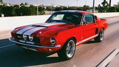 Mustang Fastback, Mustang Cars, Ford Mustang Gt, 1967 Mustang, Ford Shelby Gt 500, 1967 Shelby Gt500, Ford Mustang Classic, Ford Classic Cars, Old Muscle Cars