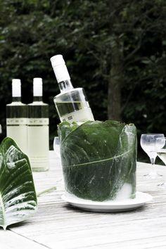 schereleimpapier DIY & Upcycling: Do it yourself Idee DIY Ice Bucket für Wein mit tropischen Blättern - die perfekte Deko für die nächste Gartenparty! Diese tolle Dekoration ist schnell und einfach zu basteln, die Pflanzen im Eis ergeben einen tollen Hingucker! So bleibt der Wein schön kühl und der Tisch ist floral dekoriert. | Anzeige | Weinliebe | Bree Wein | Tropical Design | Ideas | Crafting | how to make an ice bucket | Sommer DIY | summer